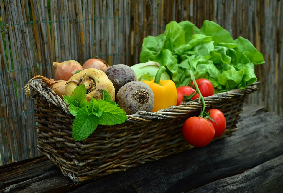 basket of vegetables on a wooden bench